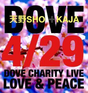 "Wメリケン波止場 ""DOVE Charity Live NEWBORN!~FOR THE CHILDREN ~世界中の子供たちに助けはいつも必要です"""